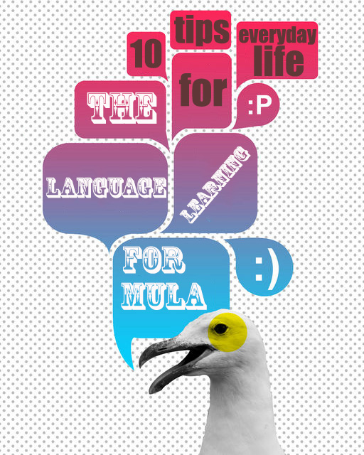 The Language Learning Formula
