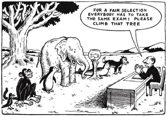 Einstein fair selection