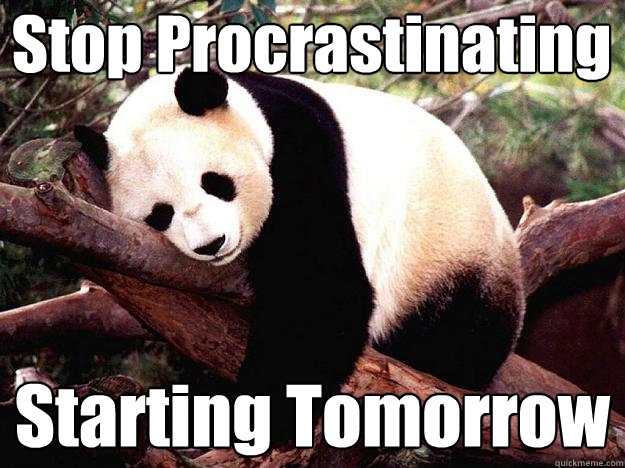 Procrastinating Panda