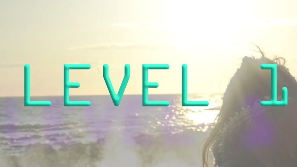 Level a1